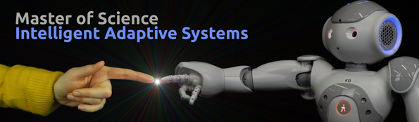 Intelligent Adaptive Systems